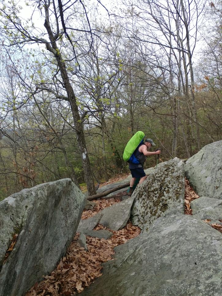 Appalachian Trail 341 to Hoyt_115042